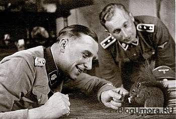 "Фото ""Тотенкопф""-reinhold-l-w-playing-with-squirrel-nazi-totenkopf-officer-wehrmacht-waffen-ss-animal-human-feedi-jpg"
